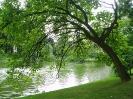 بروکسل - پارک لئوپارد