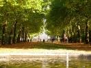 بروکسل - پارک بروکسل (Brussels Park)