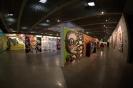سائو پائولو - جشنواره هنر دوسالانه