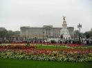 لندن - کاخ باکینگهام