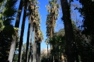 آتن - باغ ملی