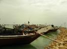 بوشهر - لنگرگاه _5