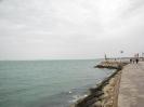 بوشهر - سواحل خلیج فارس_10