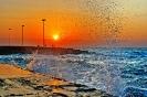 بوشهر - سواحل خلیج فارس_3
