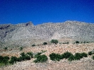 شیراز - کوه دراک -