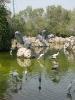 باغ پرندگان_5