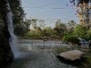 باغ پرندگان_8