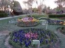 باغ گلها_8