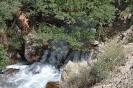 آبشار آب ملخ_5