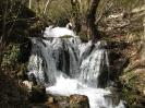 آبشار وارک_2