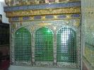 امامزاده سلطان سید احمد_1