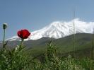 آمل - قله دماوند - _3