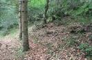 كلاردشت - جنگل اجابیت _2