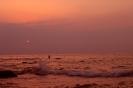 سواحل محمودآباد_5