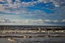 سواحل سرخ رود_1