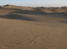 بافق - کویر بافق (درانجیر) -