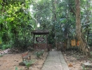 پاهانگ - پارک جنگلی تامان نگارا