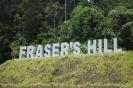 پاهانگ - تپه های فریزر(Frasers Hill)