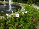 کوالالامپور - باغ ارکیده (orchid park)