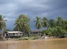 صباح - رودخانه Kinabatangan