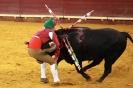 اسپانیا-فرهنگ گاوبازی
