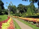 کاندی - باغ گیاه شناسی سلطنتی