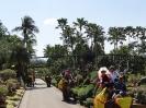 تایلند - پاتایا - باغ گیاهشناسی نانگ نوچ_21