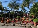 تایلند - پاتایا - باغ گیاهشناسی نانگ نوچ_2