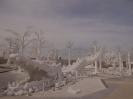 یخ جادویی سیام (Frost Magical Ice of Siam)_4