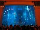 دبی - هتل آتلانتیس