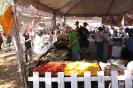 فلوریدا - جشنواره توت فرنگی