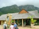 کیپ تاون - باغ ملی گیاه شناسی کرستنبوش